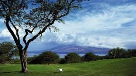 I Migliori Golf Resort nel mondo: il Four Seasons Resort Maui alle Hawai