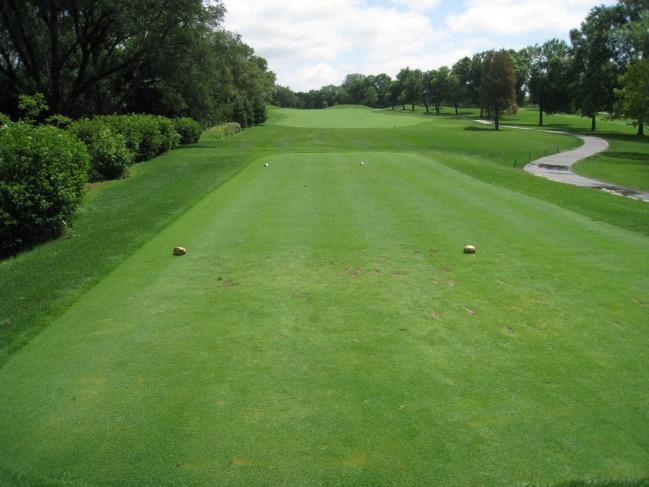 Regole del golf: area di partenza