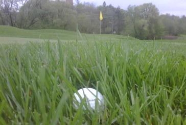 Regole golf: cercare ed identificare la palla