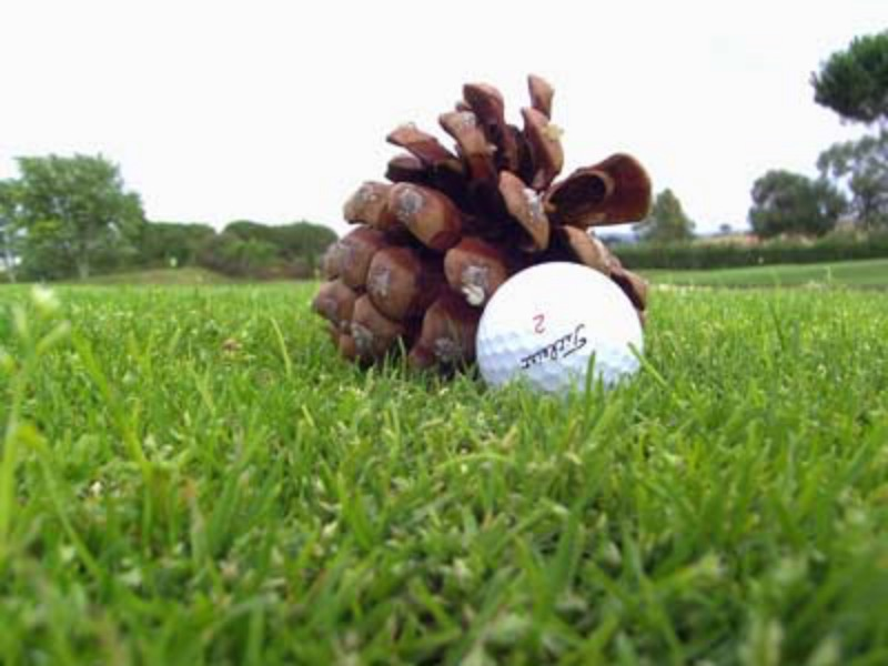 Golf: Impedimenti sciolti