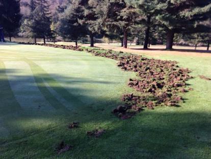 Golf: Condizioni anomali del terreno