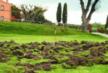 Terreno in riparazione nel campo da golf
