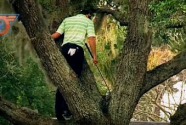 Magico shot da sopra un albero: la gloriosa pazzia di Garcia[video]